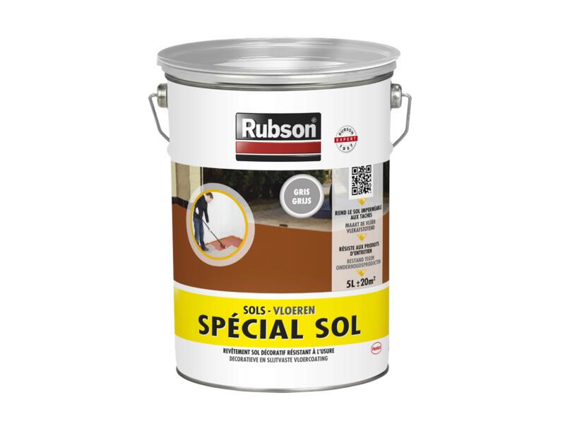 Rubson Special Sol peinture sol 5l gris