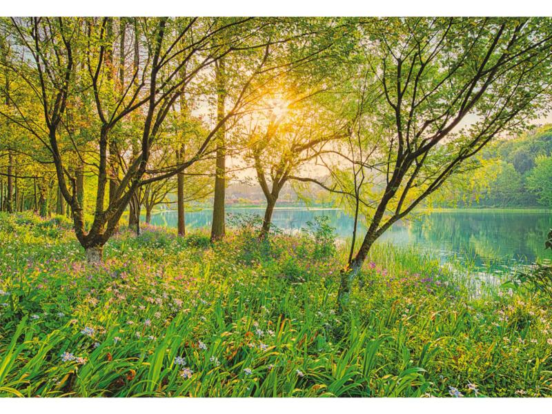 Spring Lake 8524 fotobehang 8 stroken