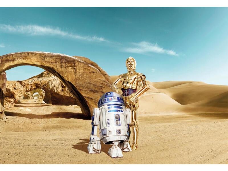 Star Wars Lost Droids fotobehang 8 stroken