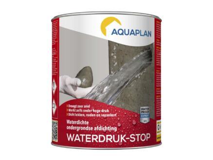 Aquaplan Stop-Fuites 1kg gris
