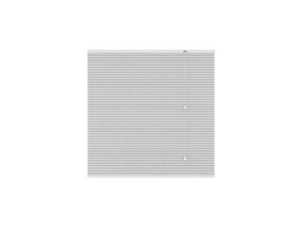 Decosol Store plissé translucide 80x180 cm blanc