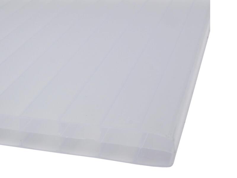 Scala Sunlite meerwandige polycarbonaatplaat 200x98 cm 16mm opaal