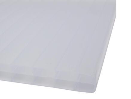 Scala Sunlite meerwandige polycarbonaatplaat 250x98 cm 16mm opaal