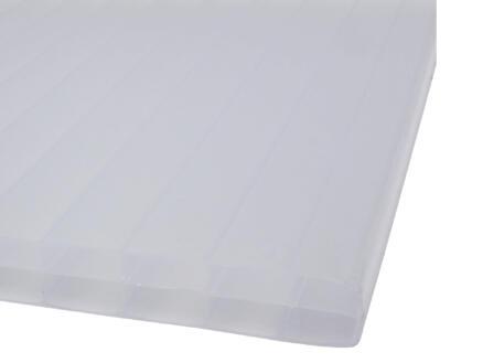 Scala Sunlite meerwandige polycarbonaatplaat 350x98 cm 16mm opaal