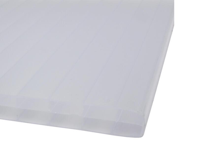 Scala Sunlite plaque de polycarbonate à parois multiples 250x98 cm 16mm opalin