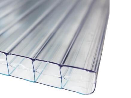 Scala Sunlite plaque de polycarbonate à parois multiples 600x98 cm 16mm transparent