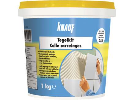 Knauf Super colle pour carrelages 1kg blanc
