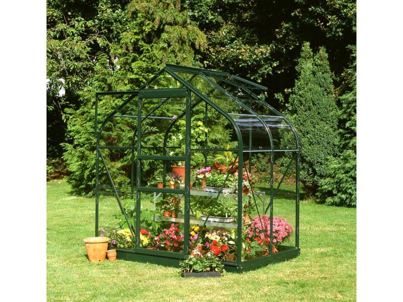 Royal well Supreme 46 serre veiligheidsglas groen