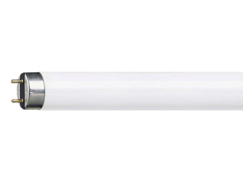 Philips TL-lamp T8 15W 440mm koel wit