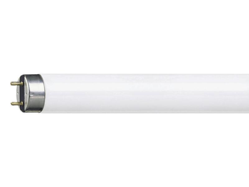 Philips TL-lamp T8 18W 590mm koel wit