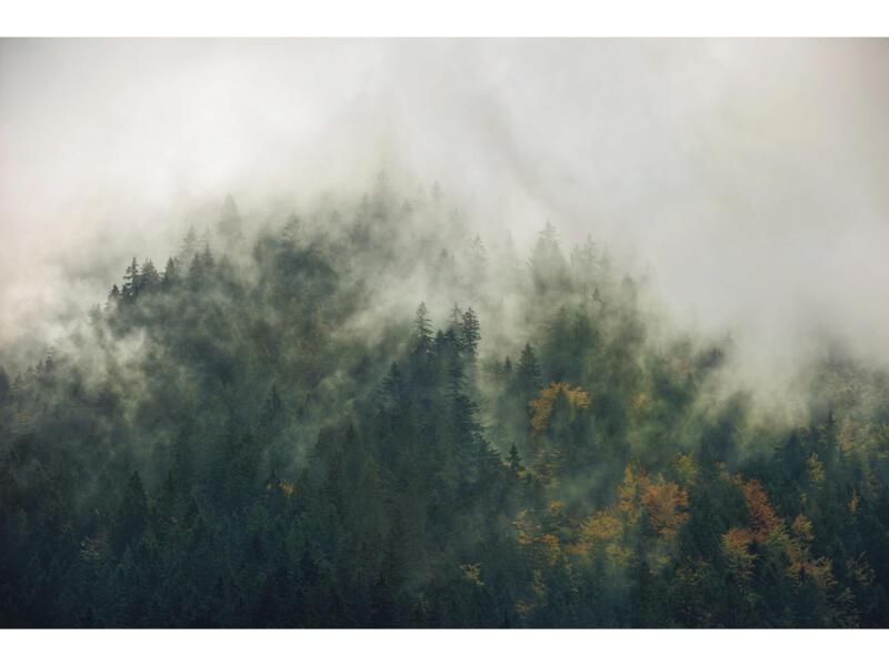 Tales Carpathians intissé photo numérique 3 bandes