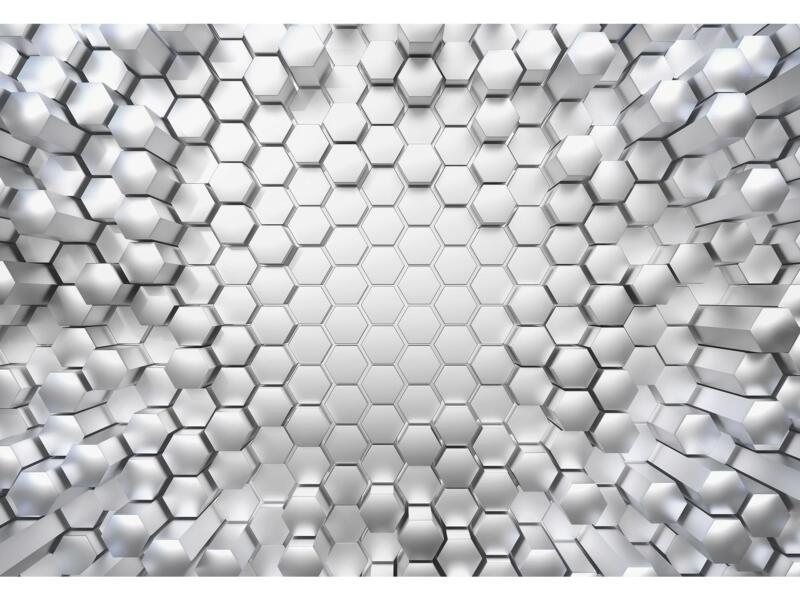 Komar Titanium fotobehang 8 stroken