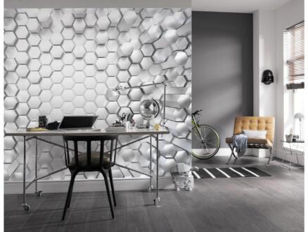 Titanium papier peint photo 8 bandes