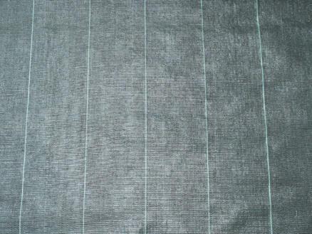 Toile de paillage 25x1 m 100g/m² noir