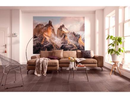 Torres del Paine papier peint photo 4 bandes
