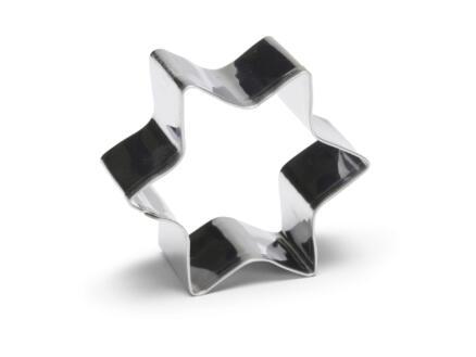 Uitsteekvorm ster 4cm inox