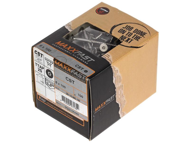 Maxxfast Vis à bois TX 100x6 mm inox 100 pièces