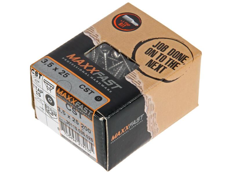 Maxxfast Vis à bois TX 25x3,5 mm inox 200 pièces