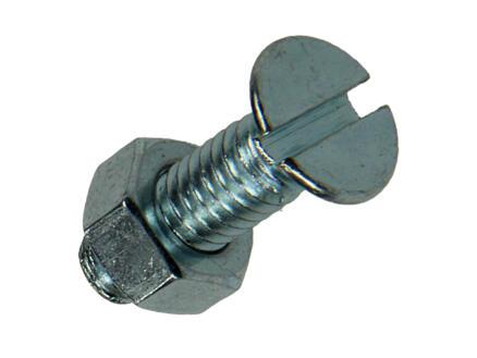 Mack Vis métal avec écrou 20x6 mm zingué 10 pièces