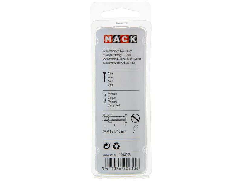 Mack Vis métal avec écrou 40x4 mm zingué 34 pièces