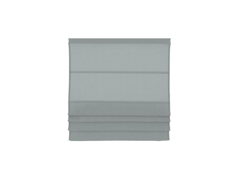 Decosol Vouwgordijn lichtdoorlatend 160x180 cm grijs