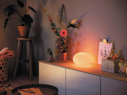 Philips Hue White and Color Ambiance Flourish tafellamp E27 9W dimbaar wit