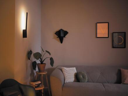 Philips Hue White and Color Ambiance Liane LED wandlamp 12W dimbaar + afstandsbediening zwart