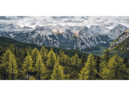 Wild Dolomites intissé photo numérique