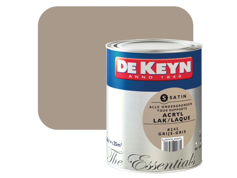 acryl lak zijdeglans 2,5l grijs #245