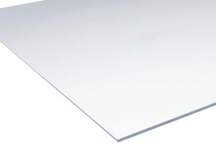 Scala acrylaat plaat 100x50 cm 3mm kristal