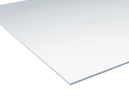Scala acrylaat plaat 50x50 cm 3mm kristal