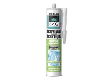 Bison acrylaatkit regenvast 310ml wit