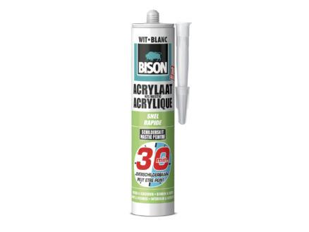 Bison acrylaatkit snel 300ml wit