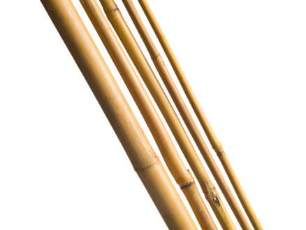 Nature bamboestok 180cm 3 stuks