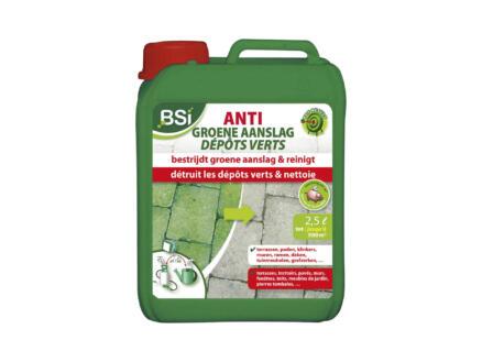 Bsi bestrijdingsmiddel groene aanslag 2,5l