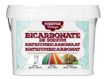 Forever bicarbonate de soude 4kg