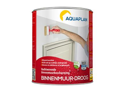 Aquaplan binnenmuur-droog 0,75l transparant