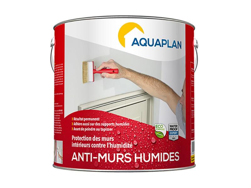 Aquaplan binnenmuur-droog 2,5l transparant