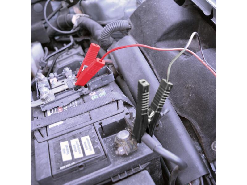 Carpoint chargeur de batterie 6V/12V