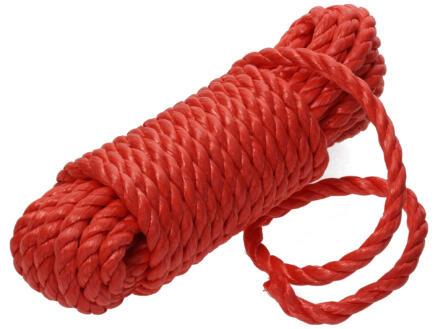 Sam corde torsadée 10m 10mm