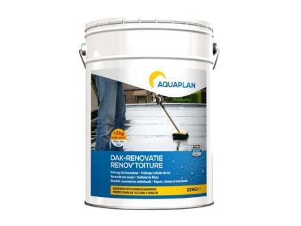 Aquaplan dak-renovatie 20+2 kg