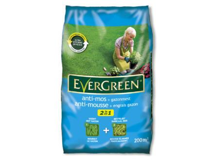 Evergreen engrais gazon & antimousse 200m²