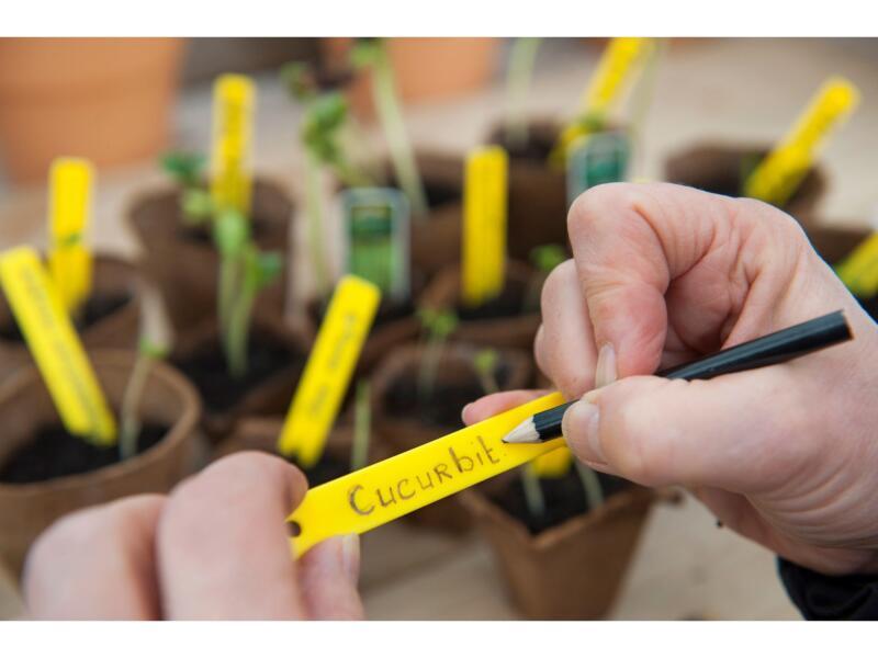 Nature étiquette de jardin à planter 10cm 25 pièces + crayon