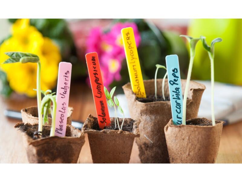 Nature étiquette de jardin à planter 10cm 40 pièces