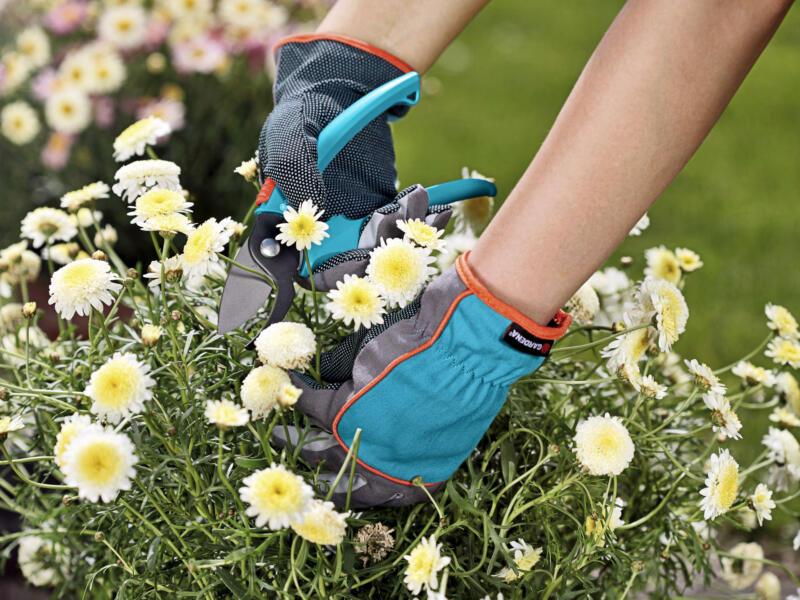 Gardena gants de jardinage 7/S coton