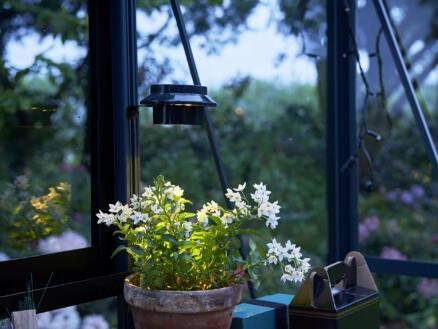 Juliana lampe solaire LED serre