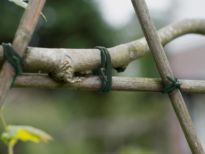Ubbink lien de tuteurage 3mm x 50m vert