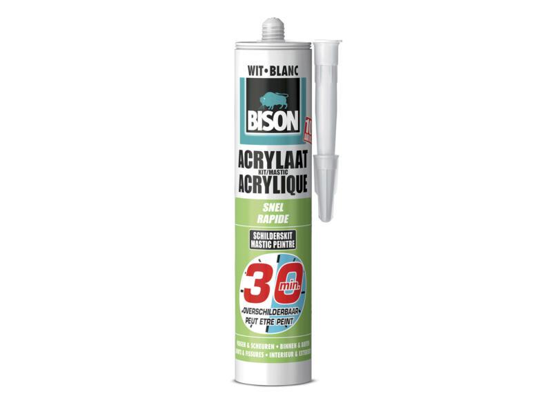 Bison mastic acrylique rapide 300ml blanc