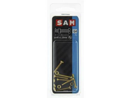 Sam metaalschroeven met moer 20x3 mm messing 7 stuks