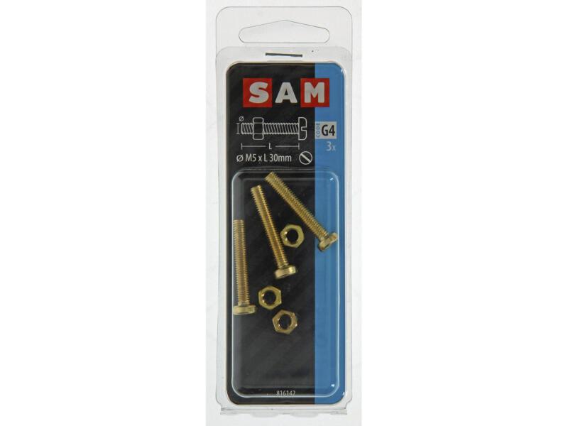 Sam metaalschroeven met moer 30x5 mm messing 3 stuks